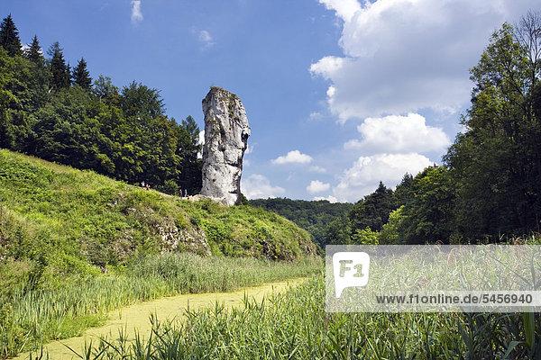 Maczuga Herkulesa  Herkuleskeule  eine Felsnadel im Ojcowski-Nationalpark  Polen  Europa