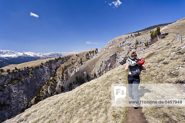 Kletterin beim Aufstieg vom Stevia Klettersteig im Langental bei Wolkenstein  hinten der Schlern  Gröden  Südtirol  Italien  Europa