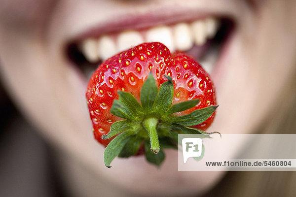 hoch  oben  nahe  Erdbeere  Frau