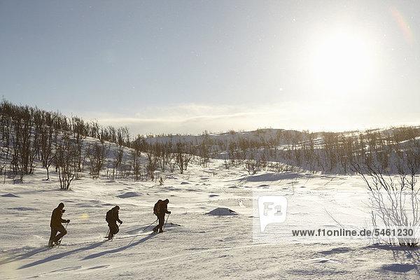 gehen  Ski  Schnee