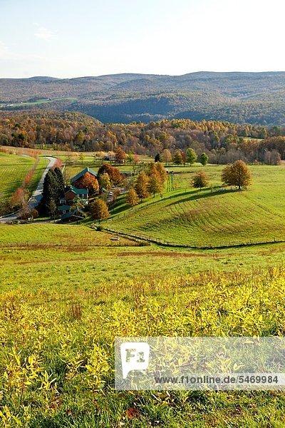 Landschaftlich schön landschaftlich reizvoll Berg Wohnhaus Verletzung der Privatsphäre Design Ansicht Lorbeer Highlands