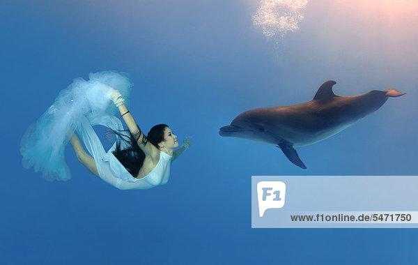 Delphin Delphinus delphis Großer Tümmler Große Tursiops truncatus Dalbe Frau schwimmt