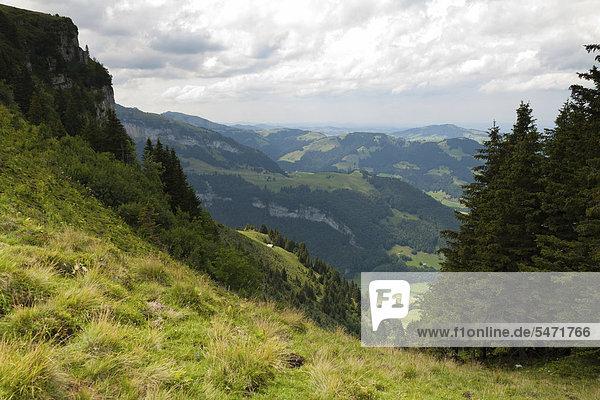 Die Alp Sigel mit Blickrichtung Ebenalp  Brülisau  Appenzell Innerrhoden  Schweiz  Europa  ÖffentlicherGrund