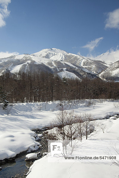 Winterlandschaft  Hakuba  Nagano  Japan  Asien