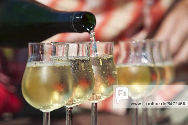 Weißwein  Riesling  wird in Weingläser eingeschenkt  Rheingau  Hessen  Deutschland  Europa Weißwein, Riesling, wird in Weingläser eingeschenkt, Rheingau, Hessen, Deutschland, Europa