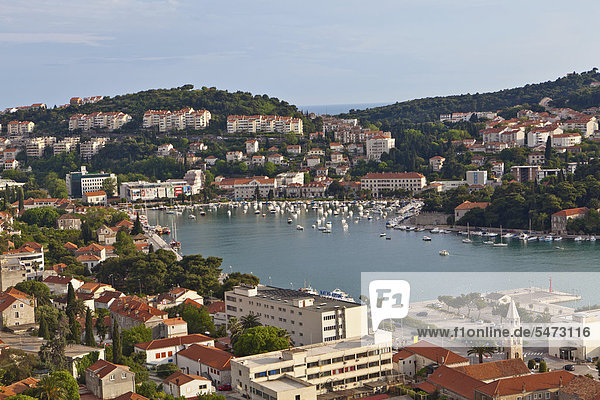 Blick auf Dubrovnik und den Hafen Dubrovnik  Mitteldalmatien  Dalmatien  Adriaküste  Kroatien  Europa  ÖffentlicherGrund