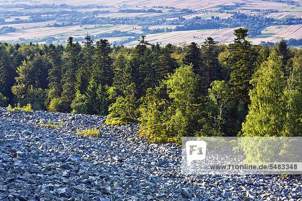 Geröllfeld auf dem Lysa Gora Gipfel  Swietokrzyski Nationalpark  Heiligkreuz  Nationalpark  Polen  Europa