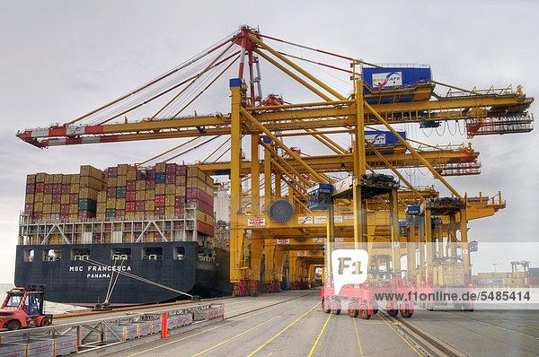 Containerhafen mit zu löschendem Schiff und Ladekränen  vorne rechts fahrbare Portalhubwagen  Bremerhaven  Bremen  Deutschland  Europa
