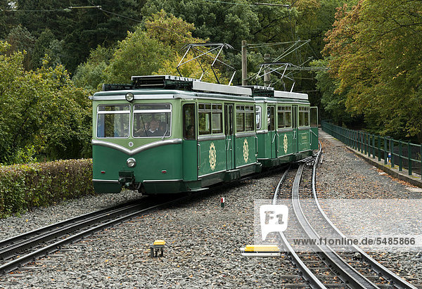 Zahnradbahn auf dem Drachenfels  Königswinter  Nordrhein-Westfalen  Deutschland  Europa Zahnradbahn auf dem Drachenfels, Königswinter, Nordrhein-Westfalen, Deutschland, Europa
