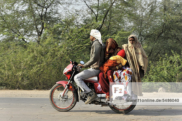 Indische Familie unterwegs auf einem Motorrad  Nähe Gwalior  Rajasthan  Nordindien  Asien