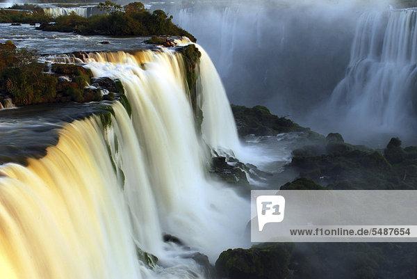 Iguacu or Iguazu Falls in the last evening light  Brazilian side  UNESCO World Heritage Site  Iguacu National Park  Brazil  South America