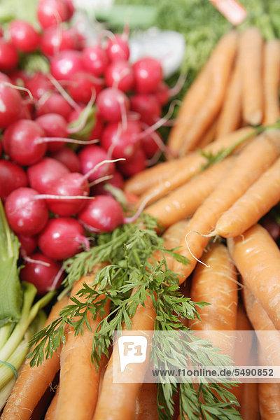 Deutschland  Oberbayern  Wolfratshausen  Gemüse im Markt  Nahaufnahme