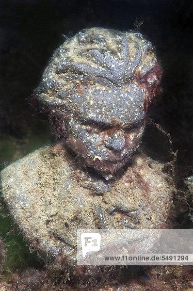 Unterwasser-Museum  Maxim Gorki oder Alexei Maximowitsch Peschkow  Schwarzes Meer  Halbinsel Krim  Ukraine  Osteuropa