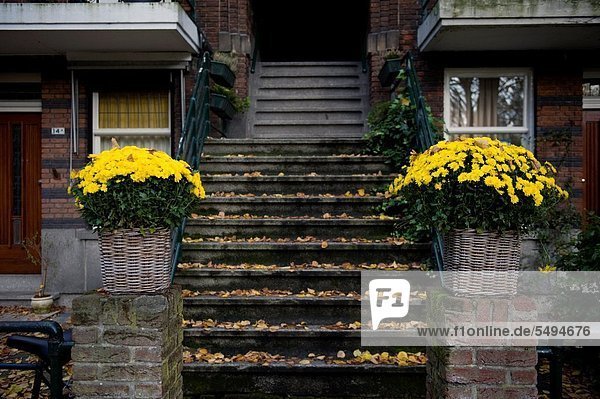 Rotterdam porch-house with stairs and flowers  leading to apartments on the floors above.