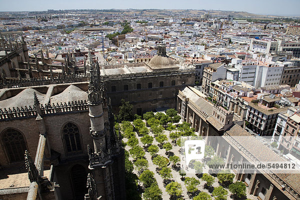 Seville Cathedral  Catedral de Sevilla  with orangery  from Giralda tower  Seville  Andalusia  Spain  Europe