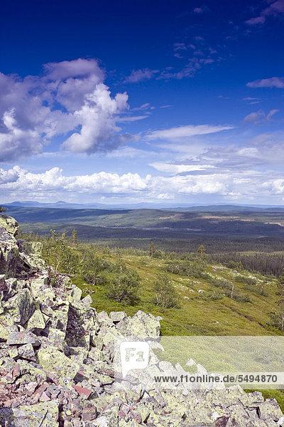Landschaft in der Nähe des Njupeskär Wasserfalls  Nationalpark Fulufjället  Dalarna  Schweden  Skandinavien  Europa
