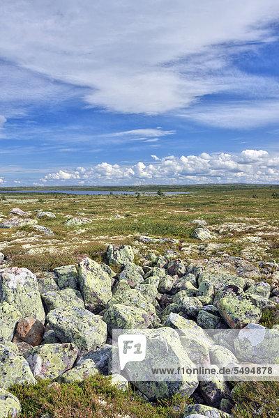 Landschaft am kleinen Rörsjön See  Nationalpark Fulufjället  Dalarna  Schweden  Skandinavien  Europa