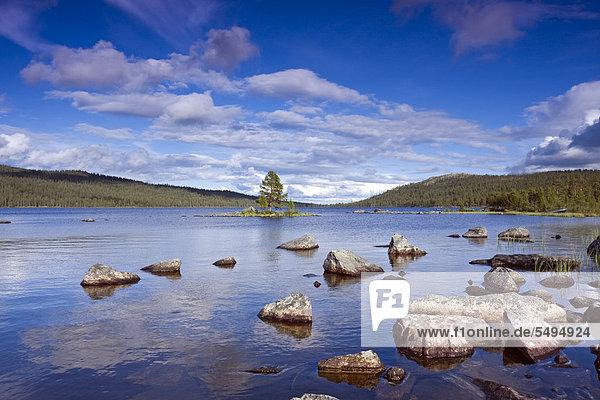 Der See Gutulisjoen  Gutulia-Nationalpark  Provinz Hedmark  Norwegen  Skandinavien  Europa