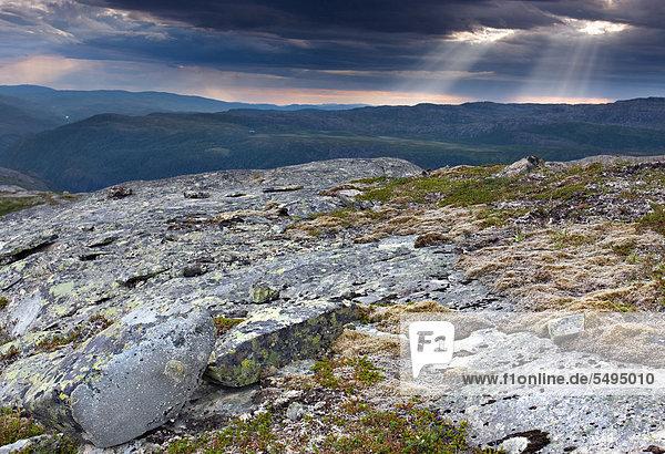 Landschaft rund um den Eldbekkskardvatnet-See  Blåfjella-Skjækerfjella-Nationalpark  Nord-Trøndelag  Trondelag  Norwegen  Skandinavien  Europa