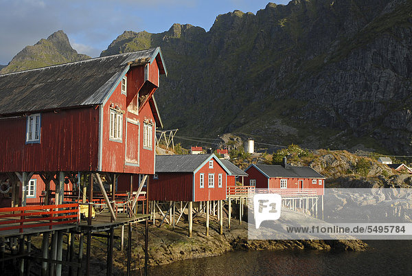 Europa Küste Meer Norwegen Moskenes Moskenesoy nordland