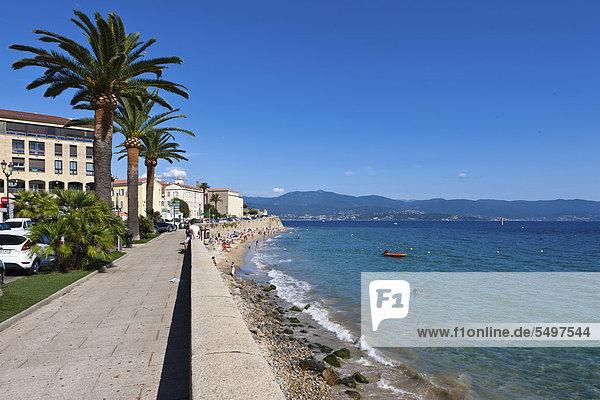 Promenade of Ajaccio  citadel at back  Corsica  France  Europe