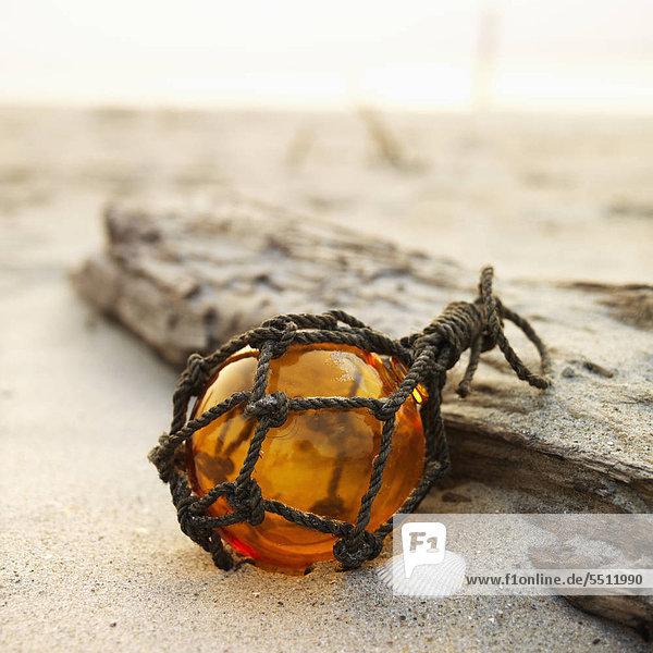 Glas Globus net Reibebrett mit Treibholz am Strand.