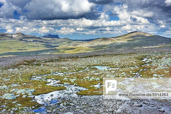 Das Tal Steindalen  Saltfjellet-Svartisen-Nationalpark  Provinz Nordland  Norwegen  Skandinavien  Europa