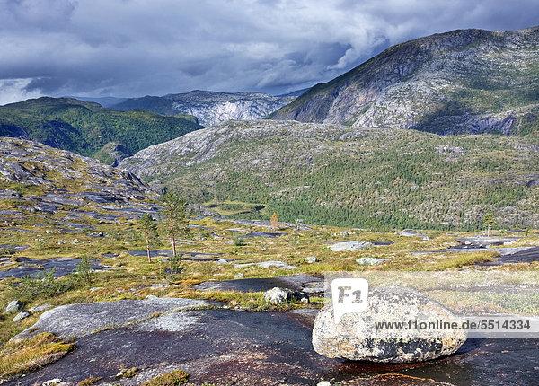 Storskogdalen Tal  Rago-Nationalpark  Nordland  Norwegen  Skandinavien  Europa