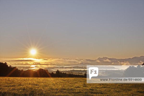 Blick von Ratzinger Höhe über Chiemsee im Sonnenaufgang  Chiemgau  Oberbayern  Bayern  Deutschland  Europa