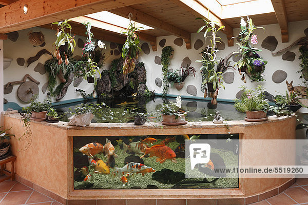 Bayern deutschland europa iblman02110541 geretsried for Aquarium im teich