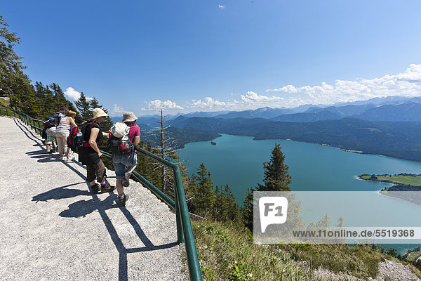 Hikers taking in the views from Mt Herzogstand across Walchensee Lake  district of Bad Toelz-Wolfratshausen  Upper Bavaria  Bavaria  Germany  Europe  PublicGround