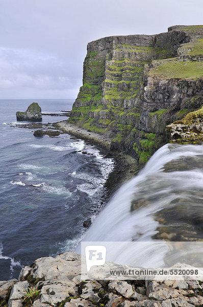 Drifandi waterfall  Drifandisbjarg  east coast of Hornstrandir  Westfjords  Iceland  Europe