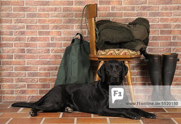Schwarzer Labrador liegt vor Stuhl  daneben Gummistiefel  Jagdausrüstung