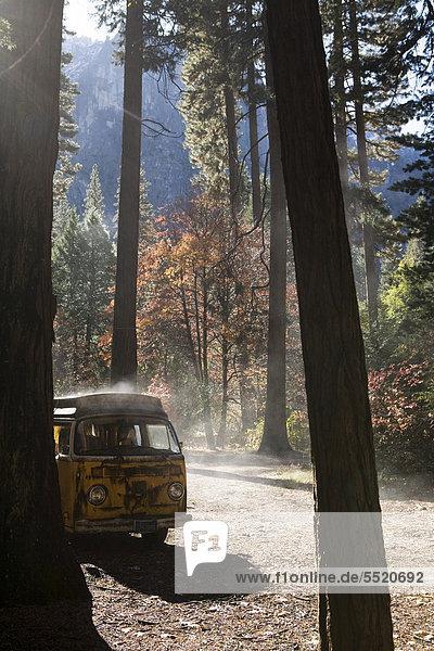 Alter VW-Bus zwischen Bäumen am Morgen nach einem Regentag  Yosemite Village  Kalifornien  USA Alter VW-Bus zwischen Bäumen am Morgen nach einem Regentag, Yosemite Village, Kalifornien, USA