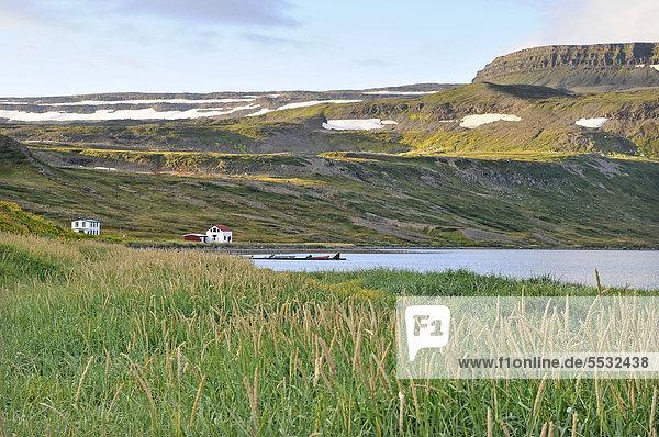 Dünengras  Hesteyri  Hesteyrarfjör_ur oder Hesteyrarfjördur  Jökulfir_ir oder Jökulfirdir  Wanderparadies Hornstrandir  Westfjorde  Island  Europa
