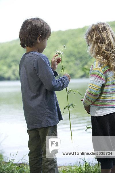 Kinder beim Betrachten von Wildblumen am See