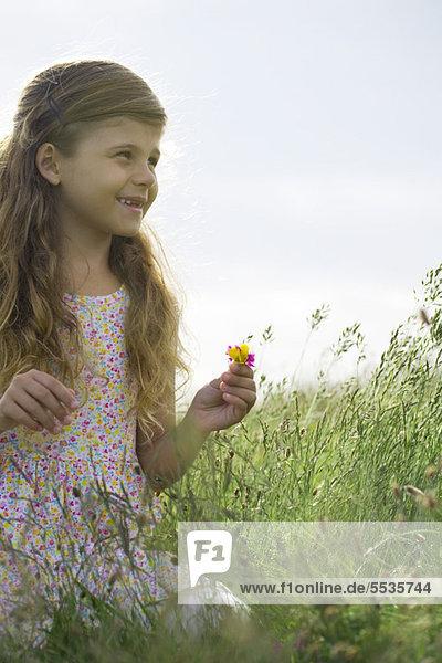 Mädchen pflücken Wildblumen