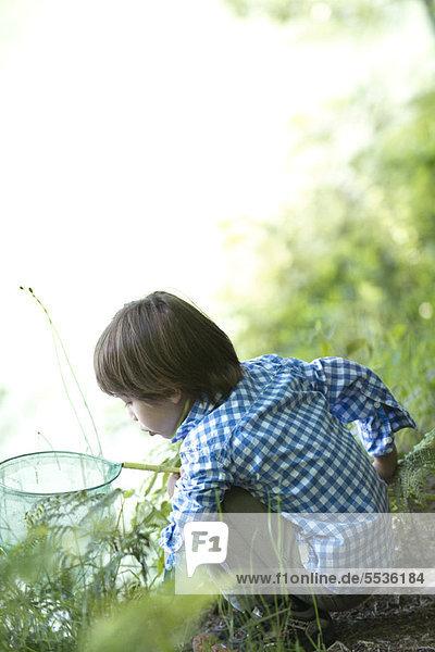 Junge fängt Kaulquappen am Wasserrand