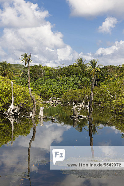 Mittelamerika Karibisches Meer Nicaragua