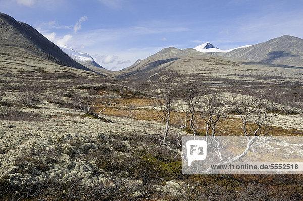 Fjelllandschaft vor schneebedeckten Bergen im Rondane Nationalpark  Norwegen  Europa