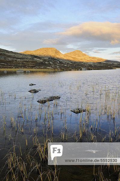 Landschaft am Muvatnet im Herbst  Ringebufjellet  Norwegen  Europa