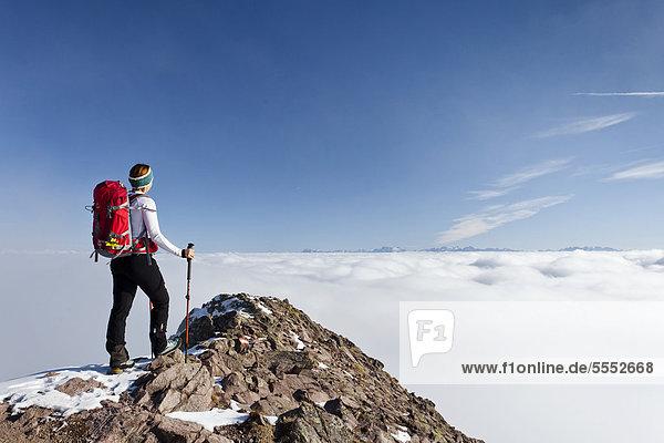Hiker ascending Grosse Laugenspitze Mountain above Laugenalm alpine pasture  overlooking the Dolomites  Gampen Pass  Alto Adige  Italy  Europe