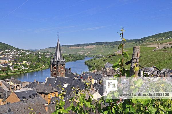 Weinberge bei Bernkastel  Pfarrkirche St Michael  Bernkastel-Kues  Rheinland-Pfalz  Deutschland  Europa  ÖffentlicherGrund