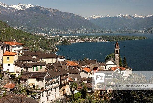 hinter  klar  See  Alpen  Langensee  Lago Maggiore  Ascona  Ronco  Schweiz