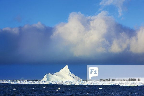 Iceberg on Antarctica 42-30612216
