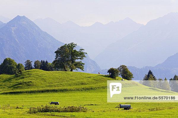 Landschaft im Allgäu  Blick nach Südosten  links das Rubihorn  Oberstdorf  Allgäu  Bayern  Deutschland  Europa  ÖffentlicherGrund