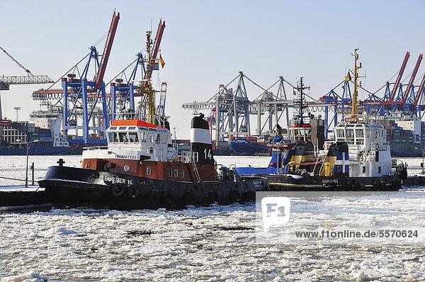 Schiffe im Hamburger Hafen im Winter  Hamburg  Deutschland  Europa
