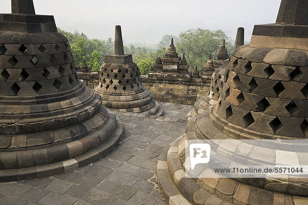 Stupas  buddhistische Tempelanlage Borobudur  Borobodur  Java  Indonesien  Südostasien