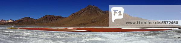 Wüstenlandschaft mit Laguna Colorada  Desierto  Uyuni  Bolivien  Südamerika