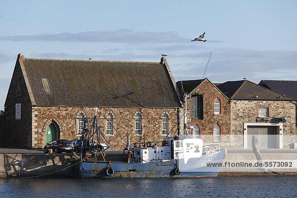 Fischerhafen  Howth bei Dublin  County Fingal  Leinster  Irland  Europa  ÖffentlicherGrund